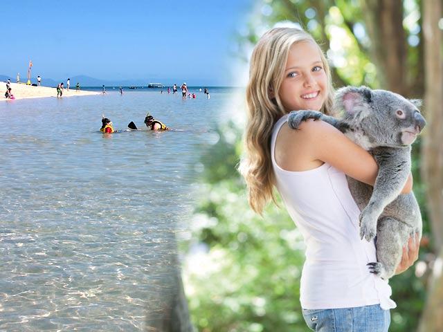 グリーン島とコアラ半日観光1日ツアー
