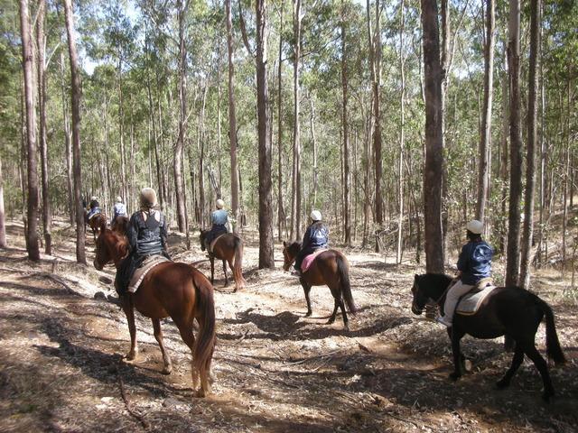 乗馬と射撃&牧場体験 半日ツアー