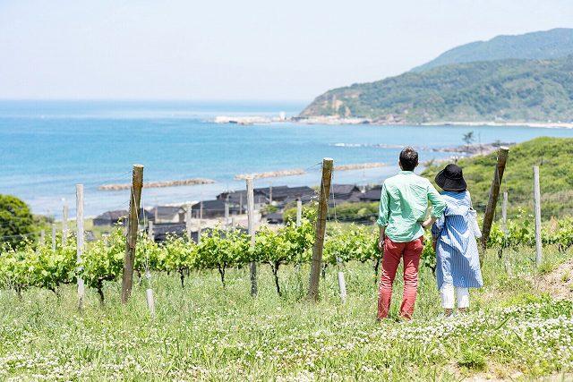 海辺の丘の上の絶景「ハイディワイナリー」醸造所見学【石川県輪島市】