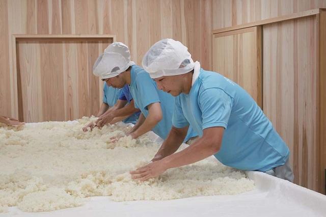 黄桜「伏水蔵」で日本酒とビールの醸造工程を見学!【京都府京都市】