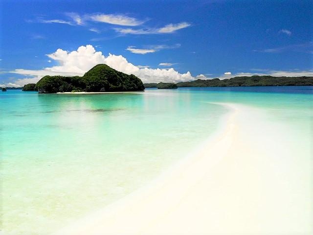 楽園パラオの海とクラゲと泥パック、日本とこんなつながりが?!パラオ大好き在住スタッフがご案内【オンライン体験/Zoom利用】