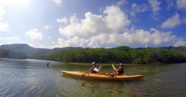水牛車も楽しめる!マングローブカヌーと由布島1日観光【西表島】
