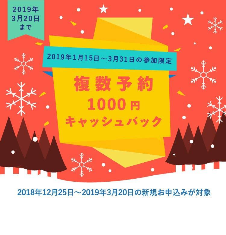 2019年3月20日までの申込が対象!クチコミ1,000円 複数割引1,000円 キャッシュバック実施中!